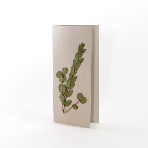 Natural Grey Card with pressed eucalyptus