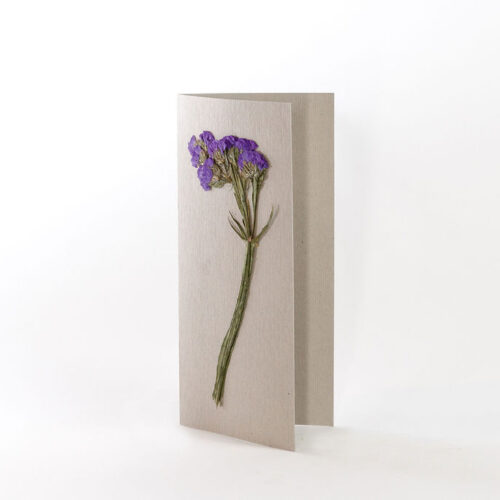 natural grey card with pressed purple statice flower