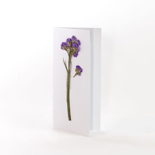 White Card with pressed purple statice