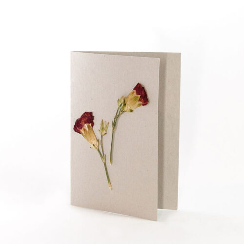 Natural Grey Card with pressed spray carnation