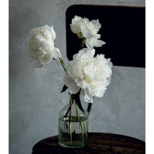 WHITE PEONIES – PACK OF 3 NOTE CARDS