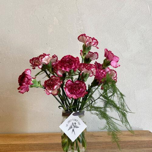 Dark pink Carnations